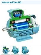 ABB(ABB) 交流电动机 M2QA160M 15KW 2P B3